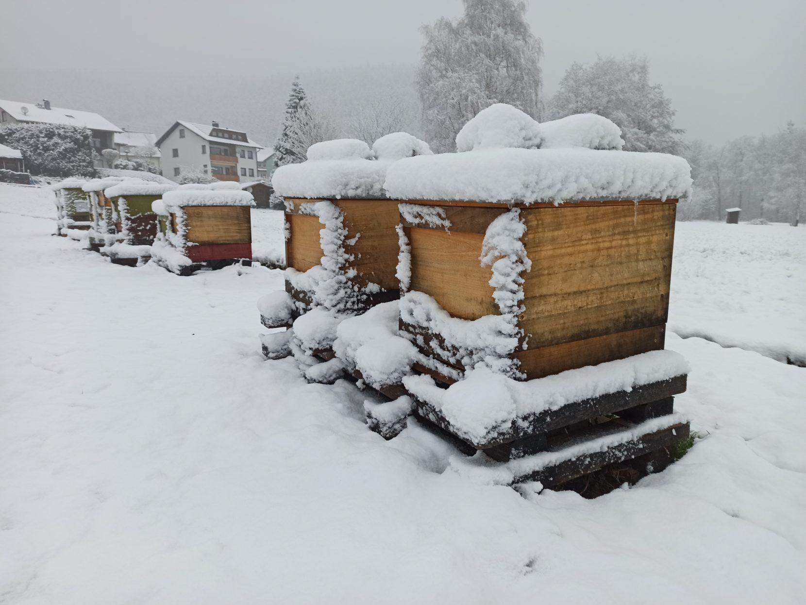 Winter Bienenwohnung